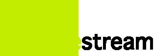 Spacestream Digital Marketing & Advertising Agency